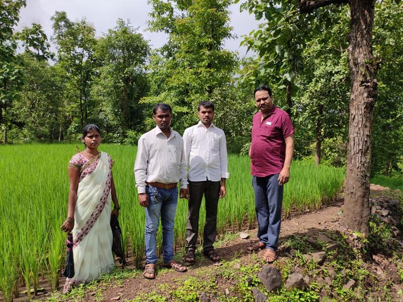 agricultores en india
