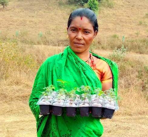 Una agricultora muestra sus plantones. Maharashtra. India.